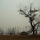 Barren Tree by bmitra