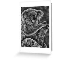 Sitting in a tree Greeting Card