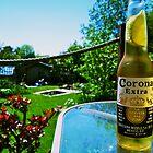 Corona in the Sun by Dan Barker