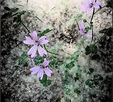 Flowers in the dirt by Wendy  Rauw