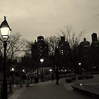 Washington Square Park at Night by Amanda Vontobel Photography