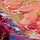 Red Rock Canyon, Waterton National Park, Alberta, Canada by Laurast