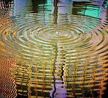Rippled Reflections by Barbara  Brown