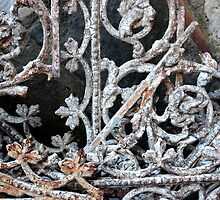 Rusted Lace by NicoleDiesel
