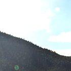 Booroomba rocks - valley by peterhau