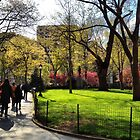 Madison Square Park April by SylviaS