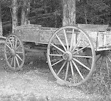 Old Farm Wagon by ThinkPics
