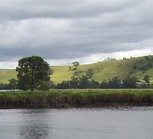Shoalhaven River NSW Panorama 2011 by Donna Huntriss