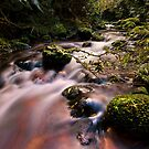 Old kaimai Stream drift by Ken Wright