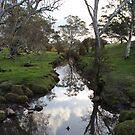 Williams Road, Mount Barker Springs, South Austra by Michael Humphrys