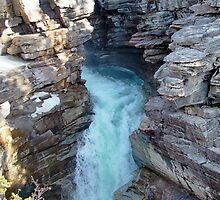 Athabasca Falls on Athabasca River by AnnDixon