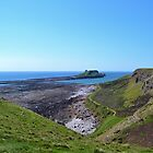 Worm's Head with causeway, Gower Peninsula by Paula J James