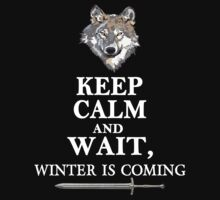 Keep Calm and Wait, Winter is Coming by best-designs