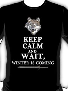 Keep Calm and Wait, Winter is Coming T-Shirt