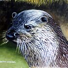 the Watchful  Otter  by james thomas richardson