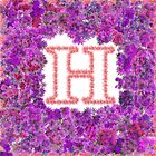 """H' Is For Hydrangea by Michael Rubin"