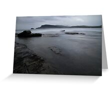 Bull Kelp Point Greeting Card