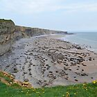 Monknash Coast, Vale of Glamorgan by Paula J James