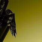 Kirra Eagle by benjlynch