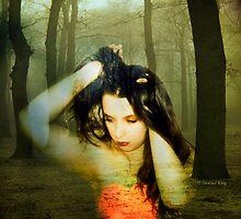 Nova Heart by Heather King
