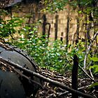 Abandoned by cyasick