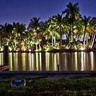 Night Lights by Adam Northam