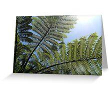Ferns Across a Blue Sky Greeting Card