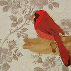 Cut Paper Animal Collage: Cardinal by chillchey