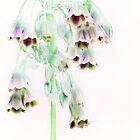 Pastel Bells by missmoneypenny