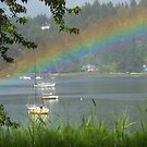 Glorious spring time rainbow by Kathleen Hamilton