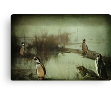 The Penguin Patch Canvas Print