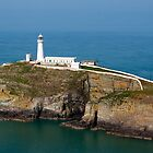South Stack RSPB by LeightonM1