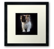 You can tell me you've met cuter than me, but I don't know if I'll believe you... Framed Print