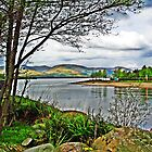 From the Base of Loch Lomond by trish725