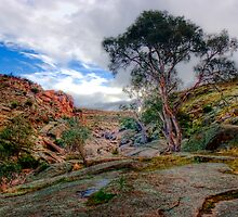 Waiting for Winter Rains - Mannum Falls, Murraylands, SA by Mark Richards