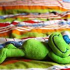 Happy Froggy by Sammy Nuttall