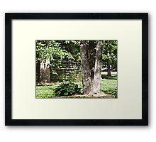 Tree Trunks and Hosta Framed Print