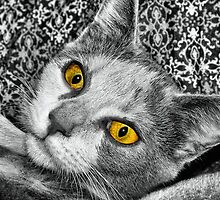 Golden Eyes by Sandra Moore