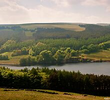 Goyt Valley by David J Knight