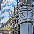 Before The Mast by Jack Ryan