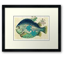 A puzzled fish Framed Print