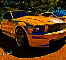 Ford Named My Mustang Shelby by ChasSinklier