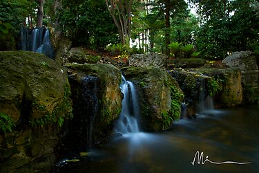 Mounts Bay Road Waterfall by Michael Hyndman