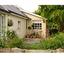 An Irish Garden In May Photographic Print