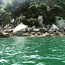 Abel Tasman Coast by cadellin