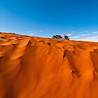 Desert Sands by Dieter Tracey