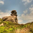The Roaches by David J Knight
