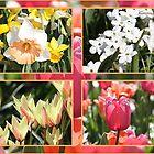 Springtime Collage by rasnidreamer