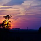Sunset in the Heartland by Don Marshall