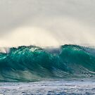 AQUA ~ Surfs up at Trannies by Karen Willshaw